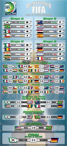 Confederaciones 2013 Fifa