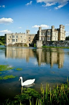 Been here! Wonderful Leeds Castle in Kent, England. A castle has been situated on the site since 1119.