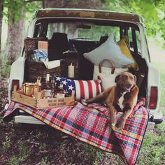A country picnic with no shortage of Bourbon. Country Picnic, Picnic Set, Picnic Ideas, Picnic Blanket, Outdoor Blanket, Car Tent, Jeep Wagoneer, Old Jeep, Vintage Luggage