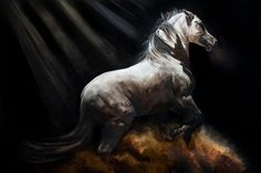 **NEW** Fine Art Giclée Print 'Eclipse' – Tony O'Connor