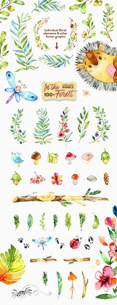 In The Forest. Watercolor Bundle - Illustrations
