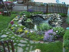great backyard pond