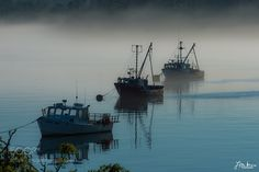 """Foggy Morning Reflections Go to http://iBoatCity.com and use code PINTEREST for free shipping on your first order! (Lower 48 USA Only). Sign up for our email newsletter to get your free guide: """"Boat Buyer's Guide for Beginners."""""""