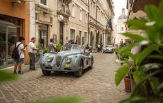 Jaguar XK at Mille Miglia