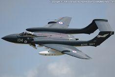 Navy Aircraft, Military Aircraft, Fighter Aircraft, Fighter Jets, Car Drawings, Jet Plane, Royal Air Force, Royal Navy, Vixen
