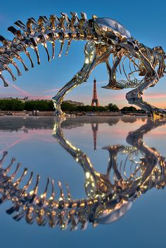 Philipe Pasqua's T-Rex (photograph by Anthony Grelot) FACING THE IRON STRUCTURE OF the Eiffel Tower is now another metal skeleton: that of a Tyrannosaurus rex. Sparkling under the Parisian sun, the anachronistic silhouette stands by the Seine at the point of departure for the Bateaux Mouches.