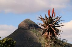 Graaff-Reinet Photos - Featured Images of Graaff-Reinet, Eastern Cape South Africa, Trip Advisor, Road Trip, Landscapes, Spirituality, Van, Memories, Spaces, Heart