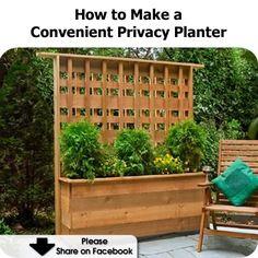 How to Make a Convenient Privacy Planter
