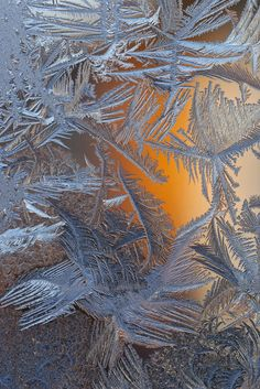 Frost..I remember Jack Frost patterns on the inside of my bedroom window in winter when I was little