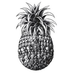 """""""Ornate Pineapple"""" Stickers by BioWorkZ 