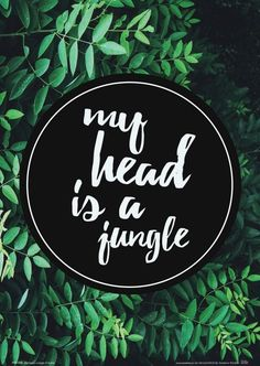 My head is a jungle - plakat - 21x29,7 cm  Gdzie kupić? www.eplakaty.pl