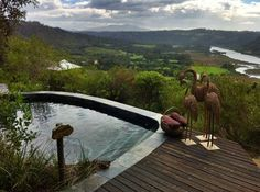 Kynsna Eco Reserve, South Africa.
