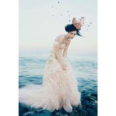 EditorialStyling•Set Design @kokoblushproductions Instagram photos | Websta