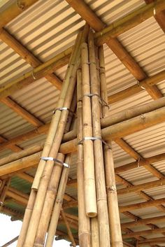 While common in most Asian homes that have enough land surrounding it, bamboo garden are not something that you usually hear about in the American home. Bamboo Architecture, Tropical Architecture, Sustainable Architecture, Architecture Plan, Bamboo House, Bamboo Garden, Bamboo Structure, Bamboo Construction, Bamboo Crafts