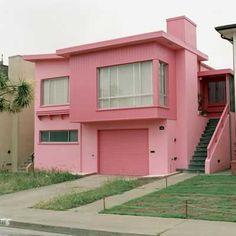 """""""Flamingo Fever, Daly City, California"""""""