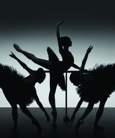 Google Image Result for http://www.australianballet.com.au/img/newsreviews/Gala01.jpg