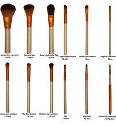 Naked3 brushes set with names of the brushes