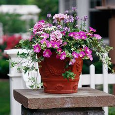 A Theme of Pinks Bluestone-topped columns add substance to the landscape, while flowers soften the look.