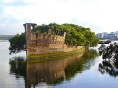 ship becomes a floating forest - The SS Ayrfield is one of many decommissioned ships in the Homebush Bay of Sydney, Australia. The ship was abandoned in since nature took over, turning the ship into a beautiful little floating forest. Abandoned Ships, Abandoned Buildings, Abandoned Places, Dame Nature, Nature Photos, Places To See, Beautiful Places, Around The Worlds, Pictures