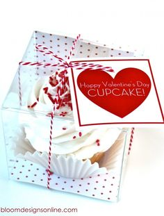 Happy Valentine's Day, Cupcake!