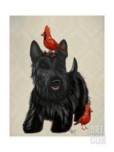 Scottie Dog and Red Birds Art Print by Fab Funky at Art.com