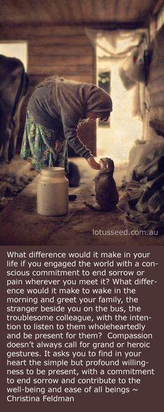 Christina Feldman Quote By Lotusseed.com.au
