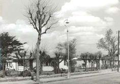 Friern Road pre-fabs 1951