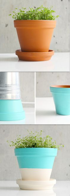Painted Terracotta Pots   Easy DIY Project