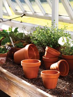 Riverhill Garden Supplies offer an extensive range of everyday terracotta garden pots for the potting shed Container Gardening, Gardening Tips, Wooly Thyme, Sensory Garden, Urban Homesteading, Terracotta Pots, Garden Supplies, Simple Weddings, Horticulture