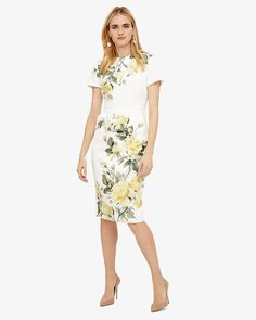 Phase Eight Nika Floral Dress Cream