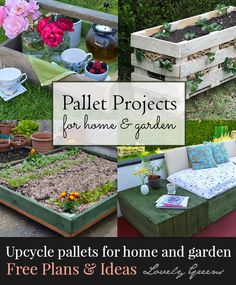 Why spend a fortune on pre-fab home and garden pieces when you can make them yourself using pallets? Here are some ideas on how to create wooden trugs, strawberry planters, and more from Lovely Greens #pallets