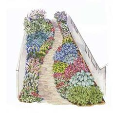 Narrow garden with path plan - great for side of the house