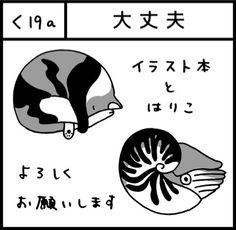 mikemori/ティアた53b/(@m_koyasi)さん | Twitter