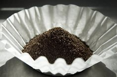 You can sprinkle coffee grounds around places you don't want ants, or on the ant piles themselves. The little buggers will move on or stay away. Used grounds are also said to repel snails and slugs.