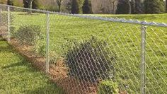 Image result for cyclone wire fencing