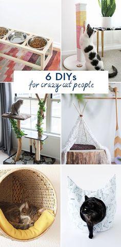 6 DIYs for Crazy Cat People @idlehandsawake