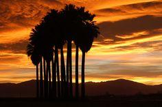 Sunrise in Bakersfield