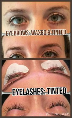 10 Best Eyebrow and Lash Tinting! images | Brows, Eye brows