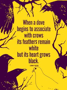 When a dove begins to associate with crows its feathers remain white but its heart grows black. German proverb