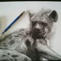 40 Beautiful Animal Sketches (25)