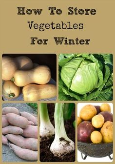 How to Store Vegetables for Winter via Better Hens and Gardens