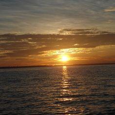 """""""Os dias se passam entre jacarés, aves coloridas, botos, insetos que não enxergamos, mas sentimos. Cada descida de lancha, um turbilhão de emoções e novidades. Até o dia de acordar antes das cinco da manhã pra ver o nascer do sol de dentro do rio. Eu, que sempre achei uma bobagem aplaudir o sol, não me contive. No rio que não vemos as margens, o sol nasce lentamente de dentro d'água, tingindo o céu, dançando atrás das árvores, até se tornar esplendoroso. Não teve jeito: bati palmas…"""