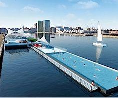 Veilig zwemmen in de Antwerpse haven