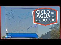 AMPA ESCOLA EL VINYET: FEM UN EXPERIMENT A CASA: EL CICLE DE L'AIGUA