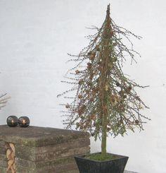 Vintertræ1.gif (500×520)