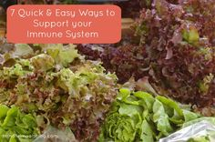 7 Quick & Easy Ways to Support your Immune System // DeliciousObsessions #immunesystem #naturalhealth