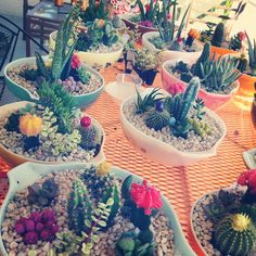 43 Beautiful Cactus Centerpiece Ideas That Will Make Your Home Stunning - Kaktus Cactus Centerpiece, Wedding Table Centerpieces, Wedding Flower Arrangements, Wedding Reception Decorations, Flower Centerpieces, Table Decorations, Centerpiece Ideas, Wedding Ceremony, Floral Arrangements