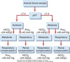alkalosis vs acidosis