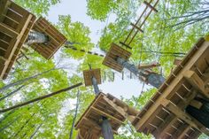 Searching for an outdoor excursion close to home? You're in luck! Hop in the car and prepare to channel your inner Tarzan while you swing from the trees at Peek'n Peak's Aerial Adventure Park!