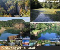 Tengerszemek magyarországon Desktop Screenshot, India, River, Outdoor, Outdoors, Goa India, Outdoor Games, The Great Outdoors, Rivers